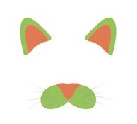 Чистка ушей у котов в ВетПрофи